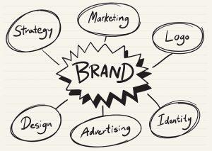 brand management concepts